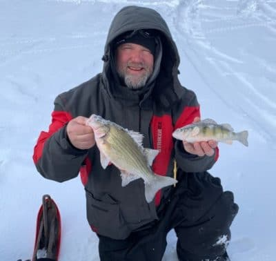 Whitebass and a perch to register in the Battle on Bago